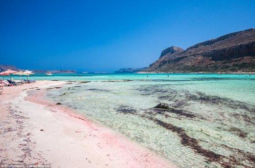 Необычная красота розовых пляжей (10 фото)