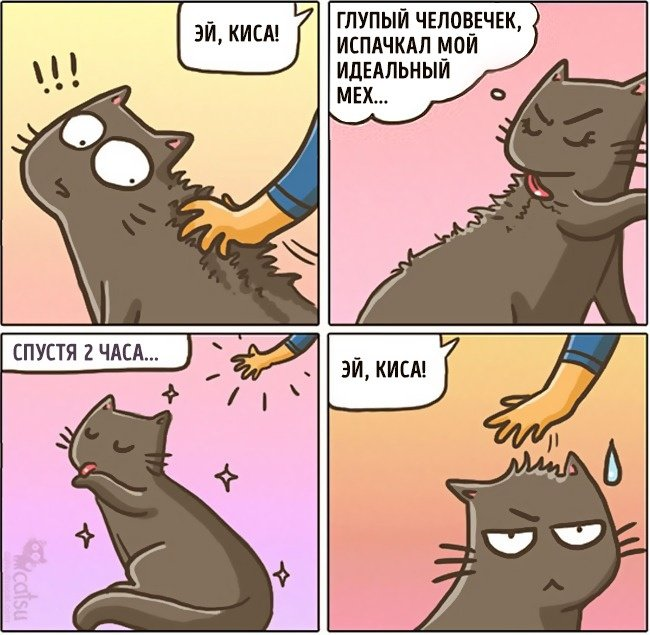 начале картинки с котенком из комиксов первом