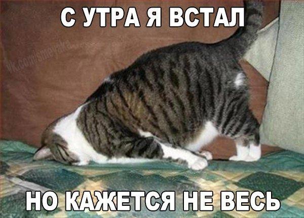 http://www.bugaga.ru/uploads/posts/2016-11/1478264082_fotomemy-13.jpg