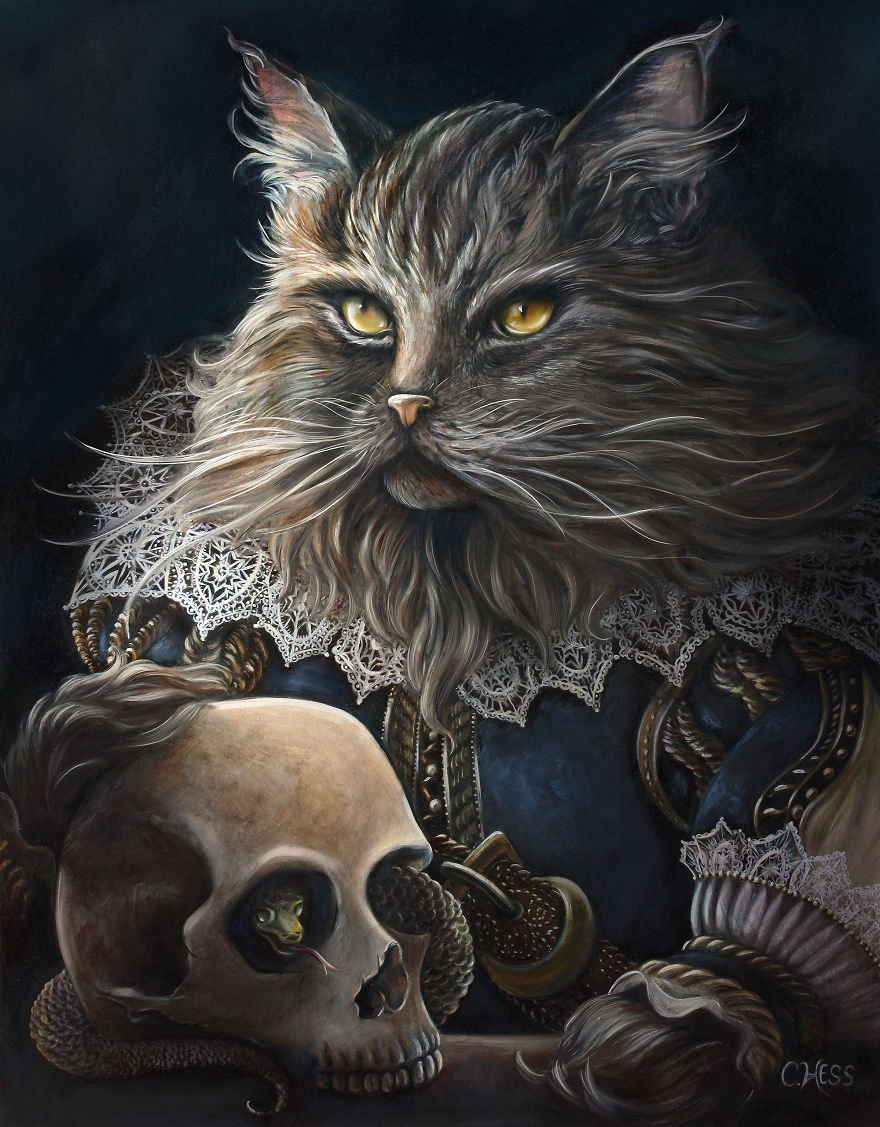 оперы кошки фентези картинки оборудован качественной