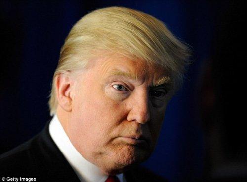 Фазан, похожий на Дональда Трампа, стал звездой Интернета (5 фото)
