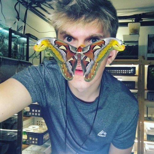 Впечатляющая коллекция одного из крупнейших в Европе заводчиков насекомых (10 фото)