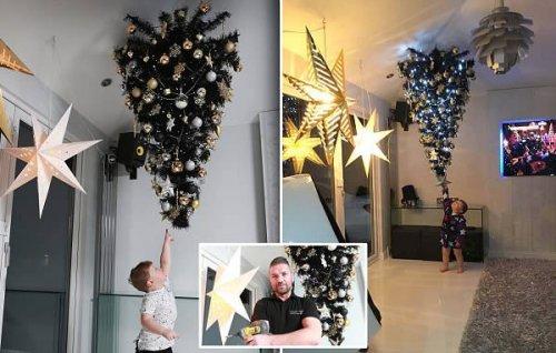 Креативные новогодние ёлки, которым не страшны дети и домашние животные (12 фото)