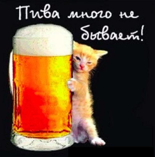 Открытки с днем рождения про пиво 69