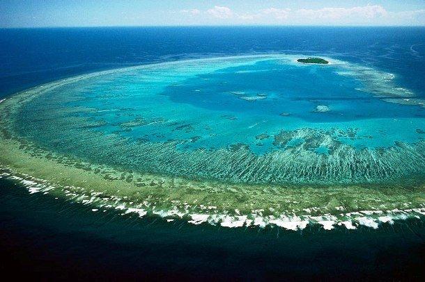 Морской парк большого барьерного рифа сообщение