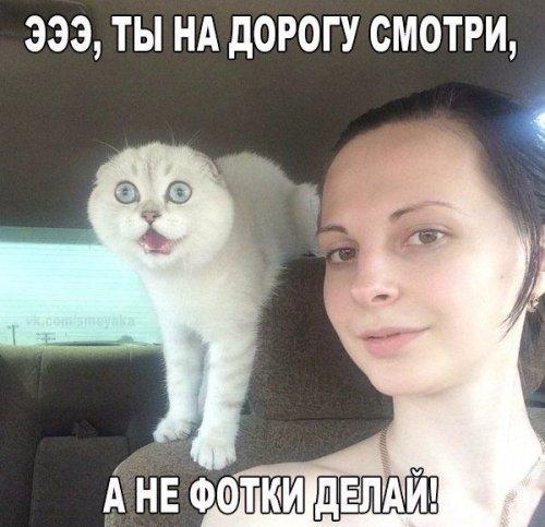 http://www.bugaga.ru/uploads/posts/2016-12/thumbs/1480584952_kartinki-37.jpg