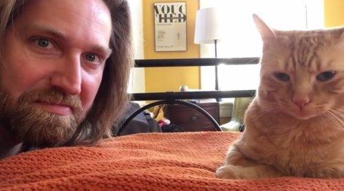 Парень отомстил коту, который будит его каждое утро в 4 часа