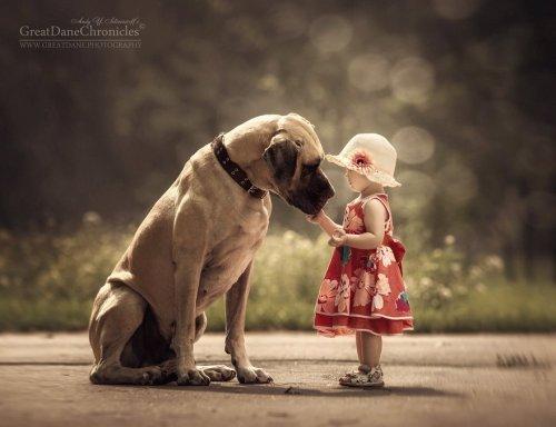 Маленькие дети и их большие собаки в фотопроекте Энди Селиверстова (25 фото)