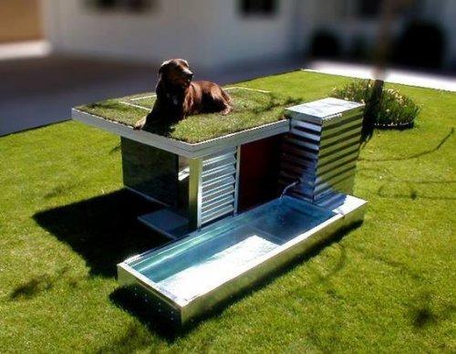 Креативные домики для собак и кошек (18 фото)