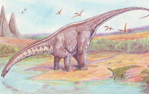 Топ-10: Факты про динозавров, вселяющие ужас