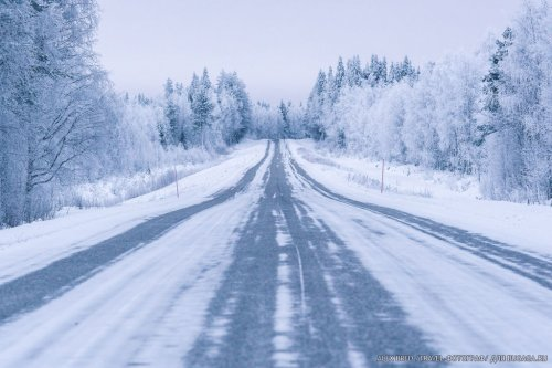 Путешествие в сказочную Лапландию (37 фото)