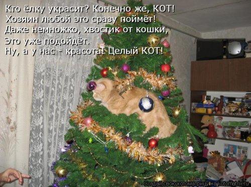 Новогодняя котоматрица (14 шт)