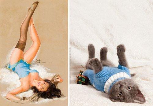 Кошки в образе пинап-девушек (27 фото)