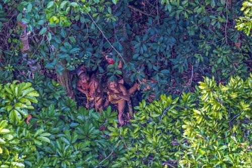 Фотограф нечаянно запечатлел амазонское племя, все еще не подозревающее о современной цивилизации