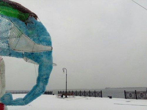 Гигантский слон из пластиковых бутылок в Архангельске (7 фото + видео)