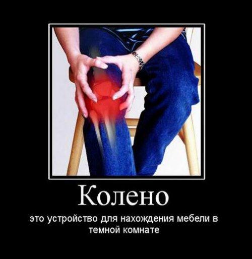 http://www.bugaga.ru/uploads/posts/2017-01/thumbs/1484295148_novye-demki-3.jpg