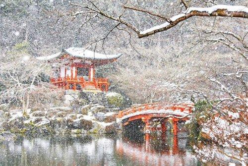Заснеженный Киото превратился в настоящую зимнюю сказку (24 фото)