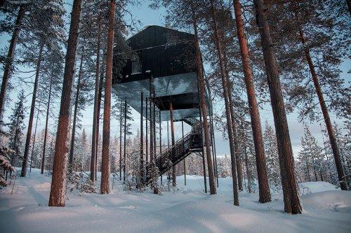 Теперь выспаться при свете северного сияния можно в отеле на дереве