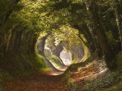 Протоптанные дороги Европы (8 фото)