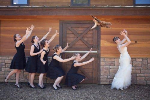 Летающие кошки вместо свадебных букетов (15 фото)