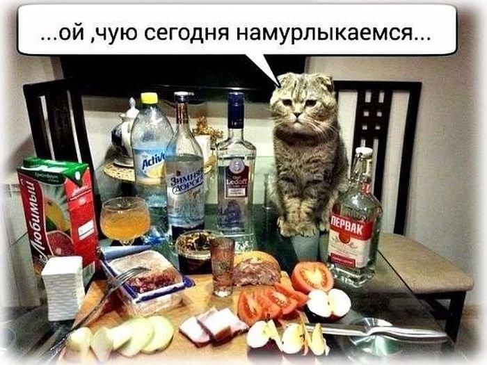 Картинки, прикольные картинки выпивку