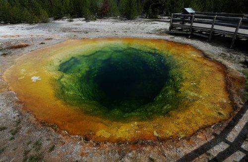 Национальный парк Йеллоустон (21 фото)