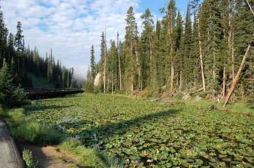 Озеро Иса: одно озеро на два океана