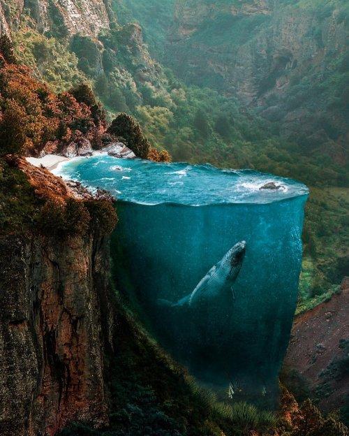 Сюрреалистические изображения художника Хюсейна Шахин (8 фото)