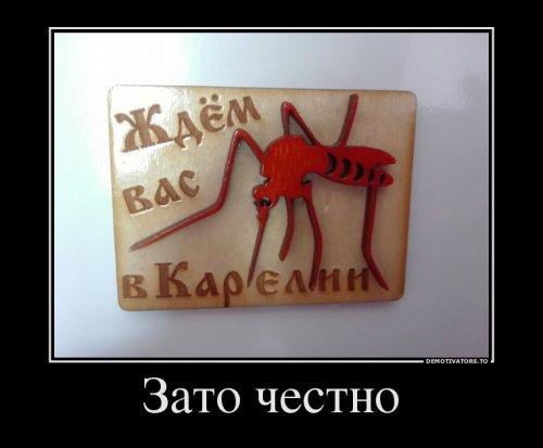 Демотиваторы для всех (21 шт)