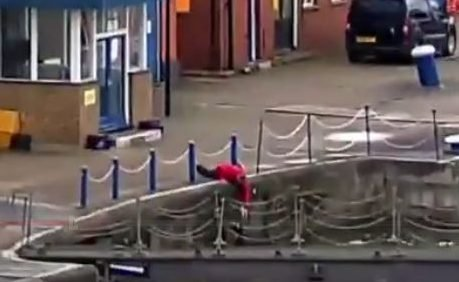 Прохожий-герой спас кота, который, убегая от погони, упал в Темзу
