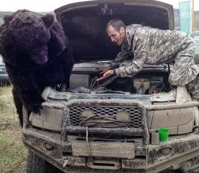 прочтения ржачные фотки картинки тем временем в россии появилась шикарном