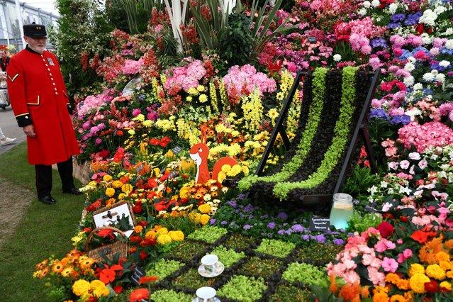 Выставка цветов челси 2017
