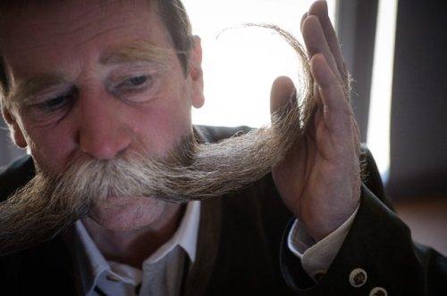 Конкурс усачей и бородачей в Унгершейме (12 фото)