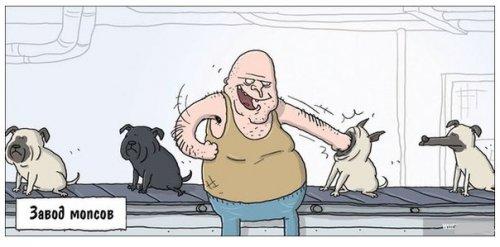 Немного комиксов для настроения (11 шт)