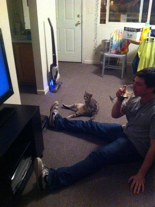 Забавные животные, которые поднимут вам настроение (20 фото)