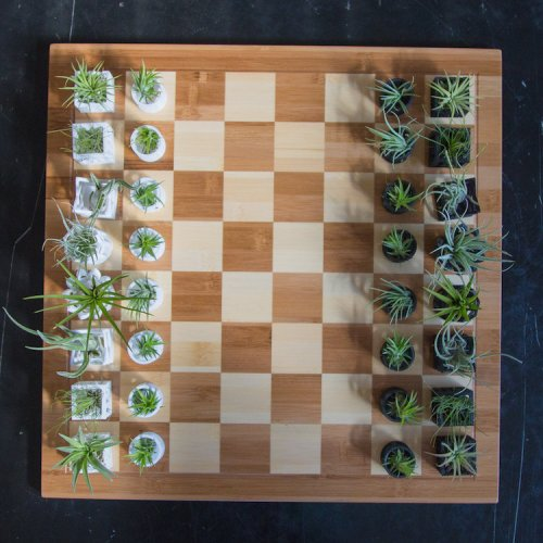 Идеальный шахматный набор для садовода-любителя (9 фото)