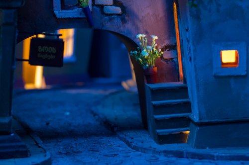 Миниатюрный город для хомяков (22 фото)