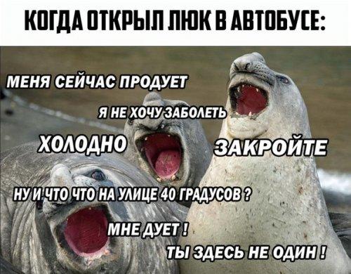 Смешные анекдоты в середине недели (12 шт)