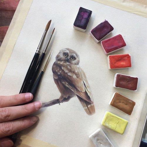 """Художественный проект """"Птица за птицей"""" Дины Бродски (10 фото)"""