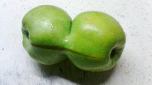 Чудо-яблочко (3 фото)
