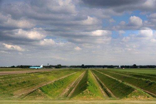 Аэропорт Амстердама борется с шумовым загрязнением с помощью ленд-арта (8 фото)