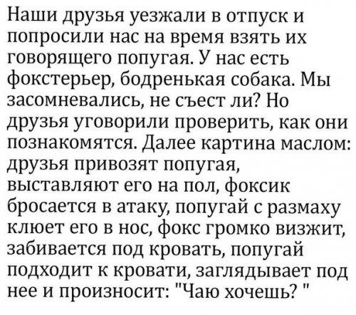 http://www.bugaga.ru/uploads/posts/2017-07/thumbs/1498863741_kommentarii-27.jpg