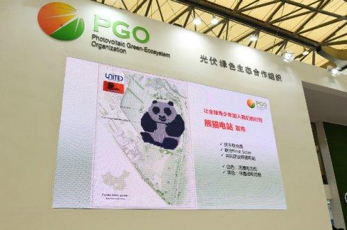 В Китае строят очаровательные солнечные фермы в виде панд (3 фото)