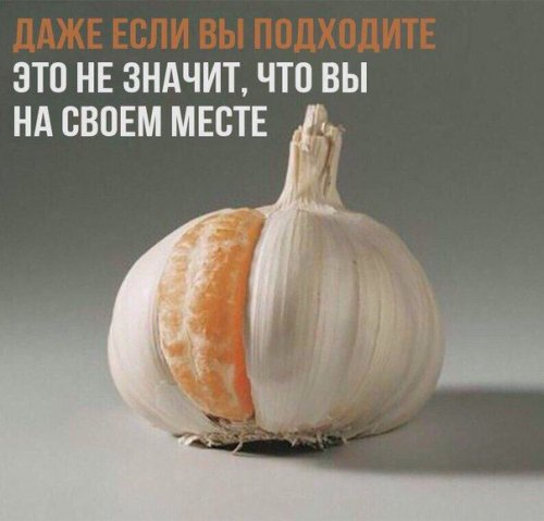 1499490859_prikol-1.jpg