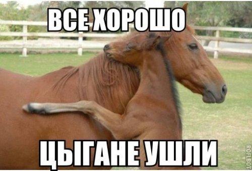Ай на-нэ, ромалы!!! Воскресные анекдоты про цыган.