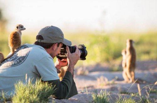 какими качествами должен обладать фотограф диклй природы