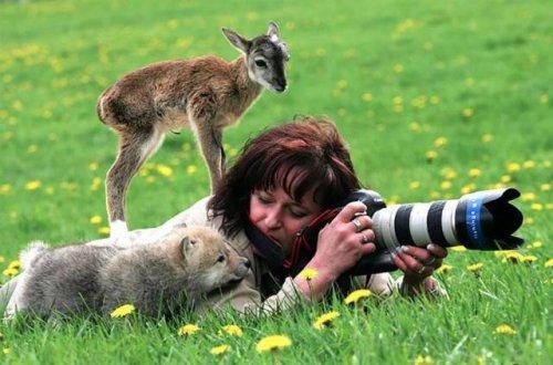 какими свойствами должен обладать фотограф диклй природы
