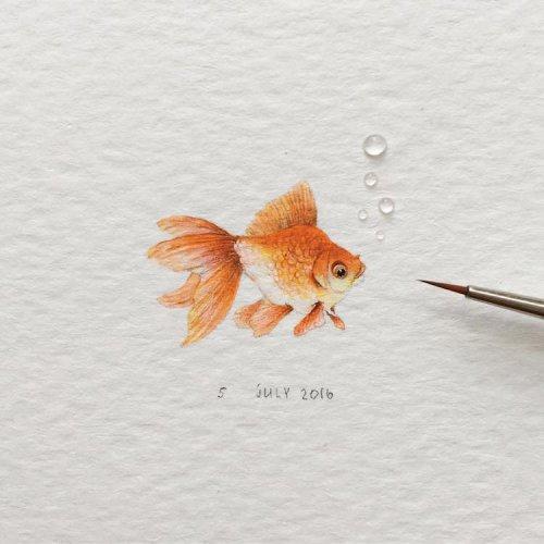 Невероятно реалистичные крошечные рисунки животных от Ирины Малаховой (21 фото)