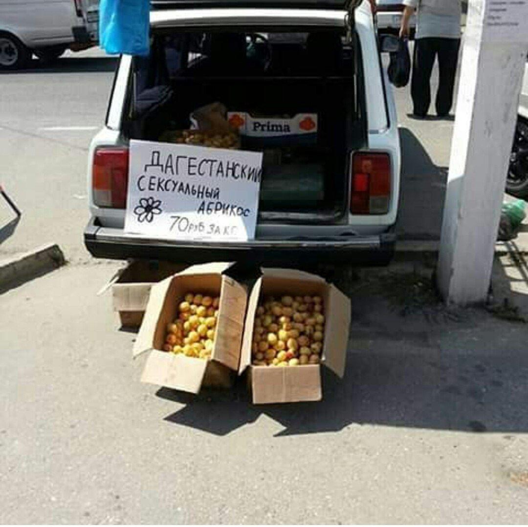 Смешные картинки про дагестана