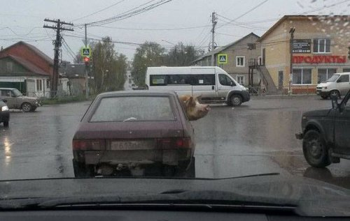 Где-то в России (22 фото)